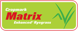 Matrix Enhanced ® Ryegrass