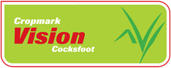 Vision Cocksfoot