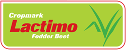 Lactimo Fodder Beet