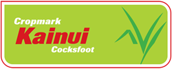 Kainui Cocksfoot