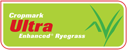 Ultra Enhanced ® Ryegrass